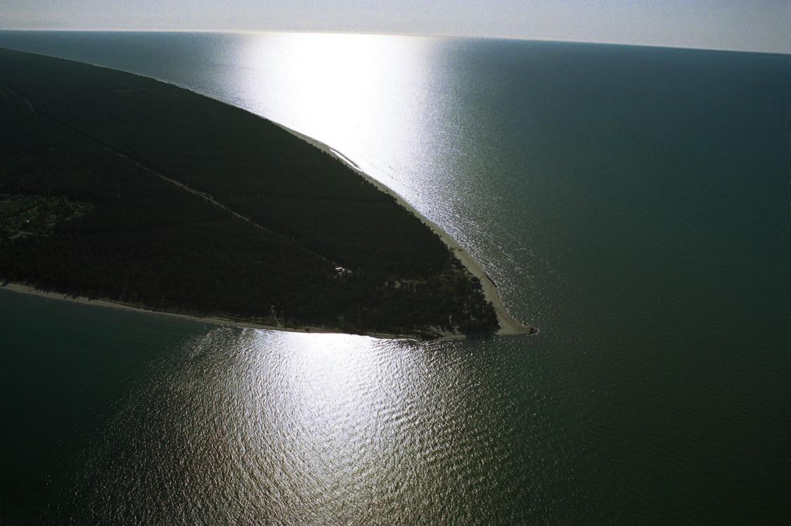 Livonian Coast